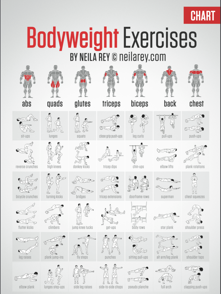 bodyweight exercise chart