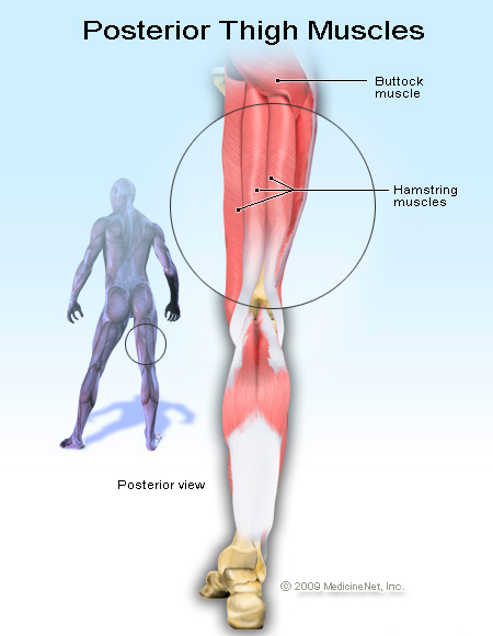 Muscle Tightness And Joint Injury Prevention And Cure