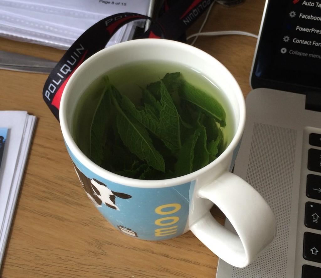 simple mint tea, 3 day fast