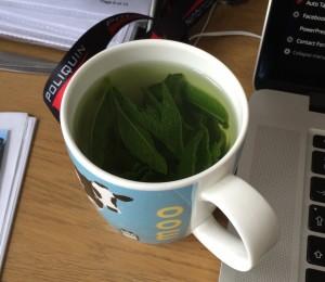 simple mint tea